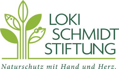 Loki_Logo_lay