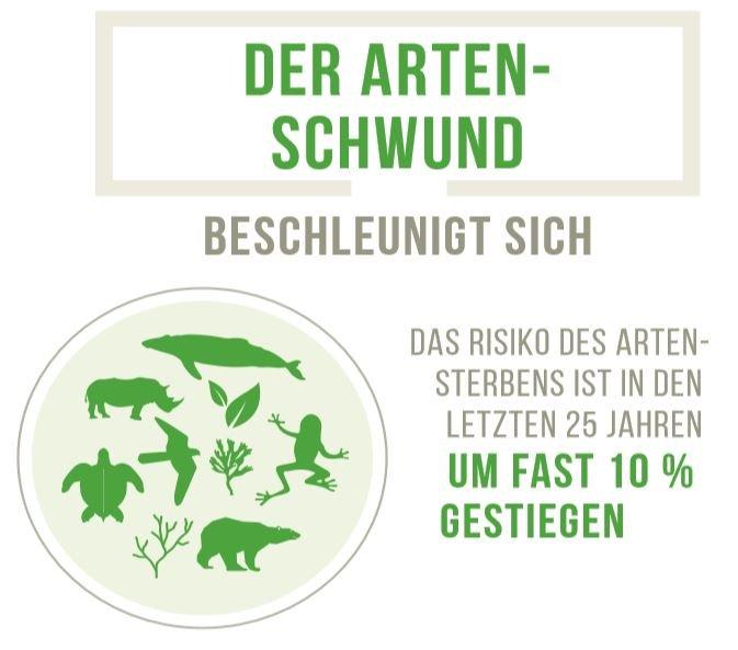 SDG-15-Graphic
