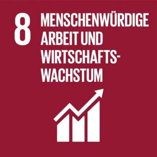 SDG-icon-DE-08_Menschenwuerdige-Arbeit-und-Wirtschaftswachstum