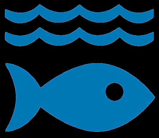 Ziel 14: Leben unter Wasser