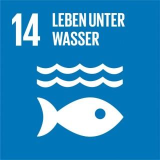 SDG-icon-DE-14_Leben-unter-Wasser