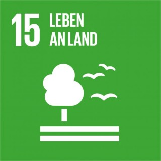 SDG-icon-DE-15_Leben-an-Land