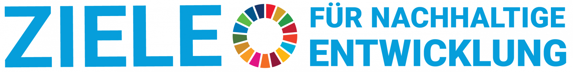 SDG-Banner
